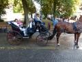 Brugge-15